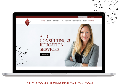 Audit Consulting Education